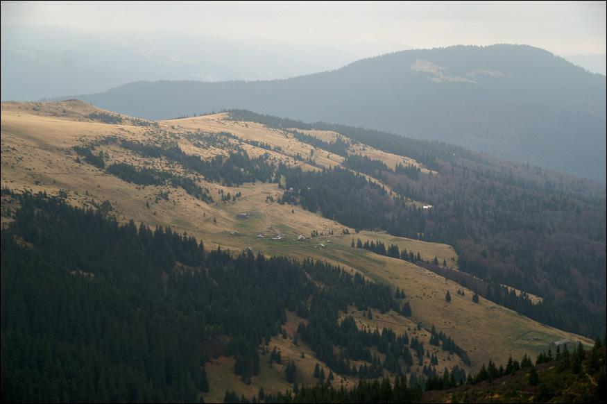 Полонина Рогнеска. Вид з перевалу Шешул.