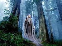 Чарівник