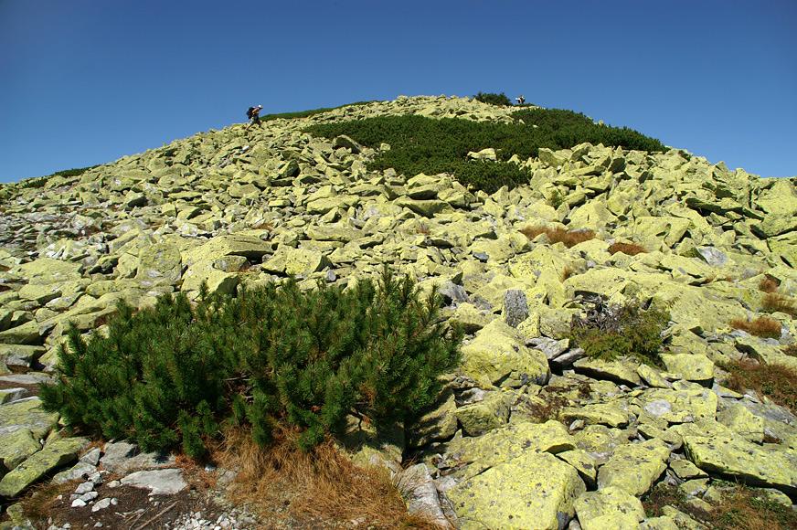Пірамідальна вершина Великої Сивулі