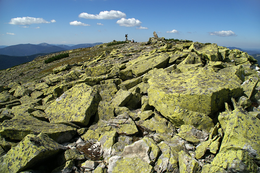 Гора Лопушна - 1695 м над р.м.