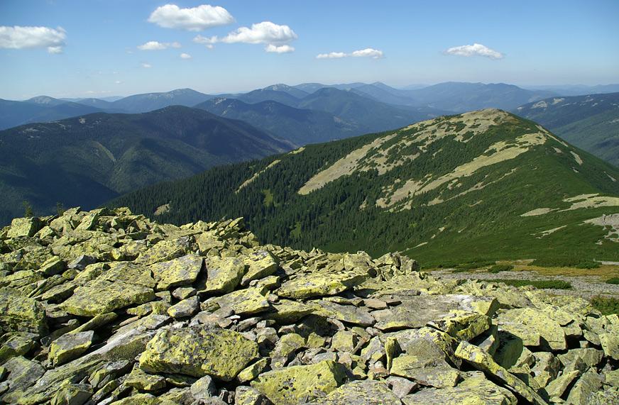 Панорама Горган з гори Лопушної