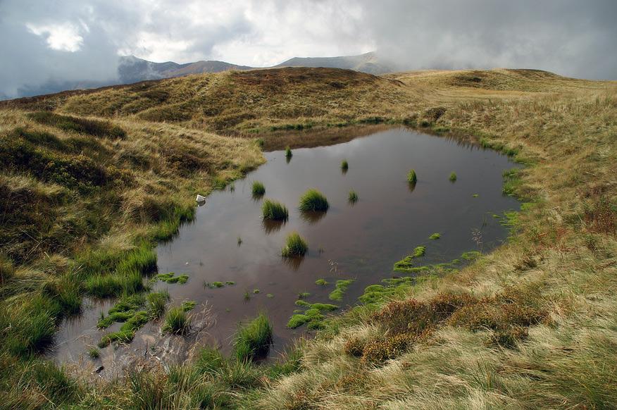 Озерце під Гембою