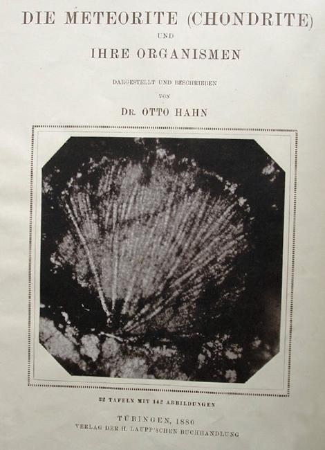 """Книга Отто Гана """"Die Meteorite (chondrite) und ihre Organismen"""", 1880"""