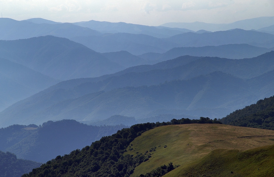 Вид з гори Кук