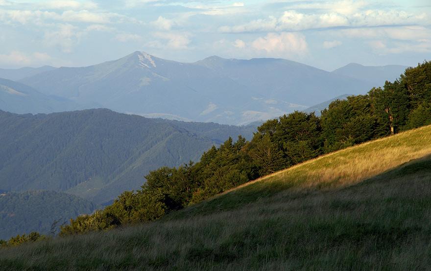 Вид на Міжгірщину з гори Волосянка