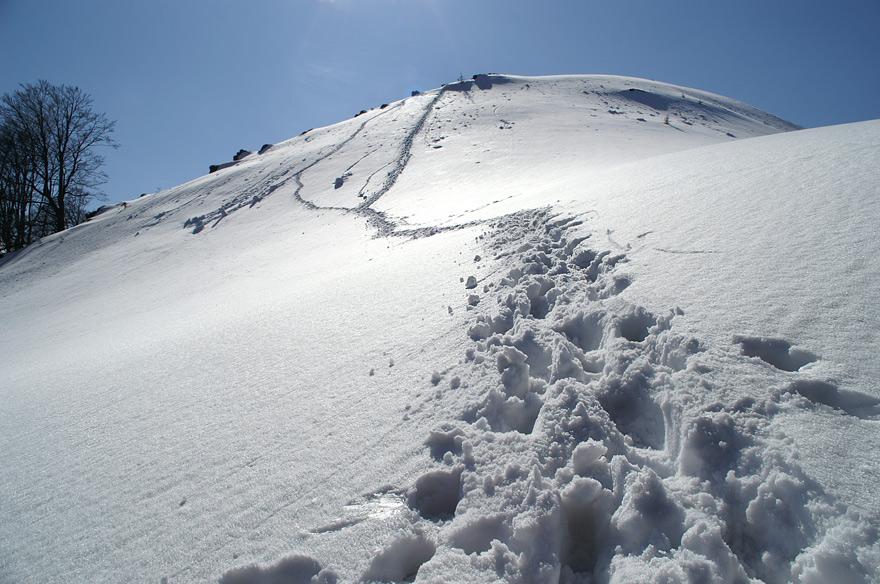 На схилах гори Православний Хрест - 1215 м