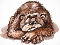 Не будіть сплячого ведмедя!
