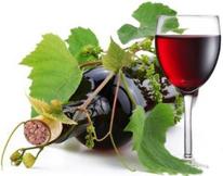 """Фестиваль виноградарів-виноробів """"Угочанська лоза"""""""