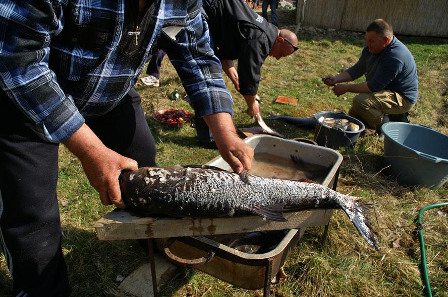 Фестиваль риболовів