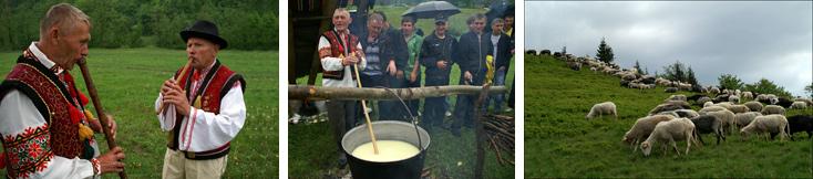 Проводи вівчарів на Боржавські полонини 2012