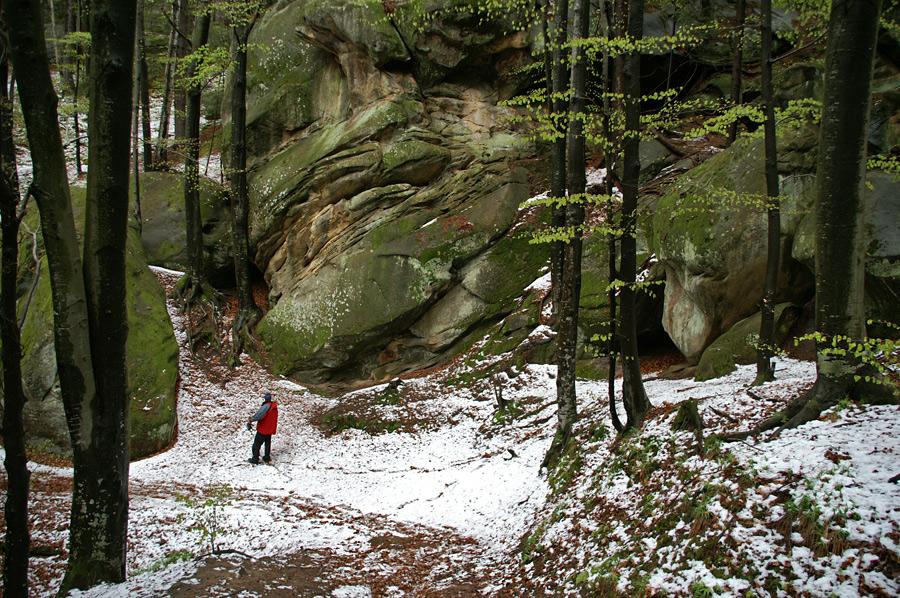 """Буковинські Карпати. Скелі """"Протяте Каміння"""""""