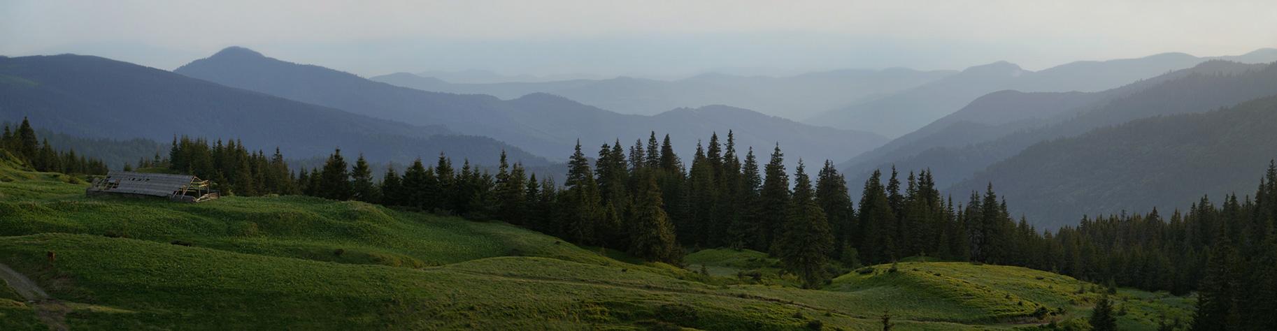 Мармароський масив. Вечір на полонині Лисича - 1470 м над р.м.