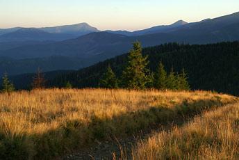 Вид з гори Щавник на Чорногору