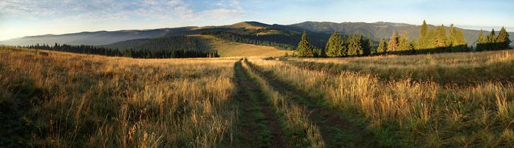 Вид на Мармароський масив з вершини гори Щавник (1378 м)
