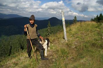 Вівчар із села Розтоки