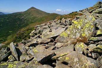 Чорногірський масив: вид на Говерлу, Брескул, Пожижевська зі схилу гори Данціж