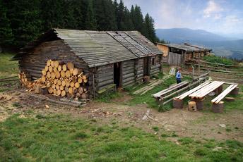 На полонині Кернички (Криниці) - 1315 м