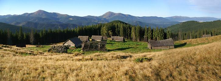 Осінь на полонині Середня (1350 м). На задньому плані Чорногірський хребет