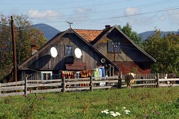 В селі Вороненко