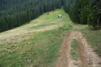 Полонина Буковинка - 1150 м над р.м.
