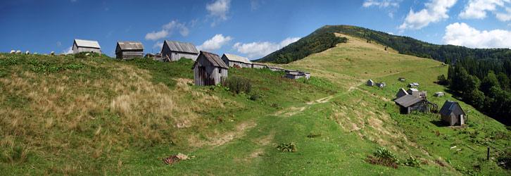 Полонина Мінчіль - 1238 м над р.м. На задньому плані гора Шешул