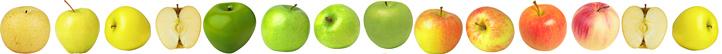 Дні яблука на Закарпатті