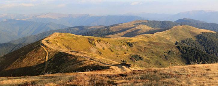Полонина Красна. Вид з гори Климова - 1492 над р.м.