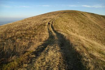 Гора Припір - 1285 м над р.м.