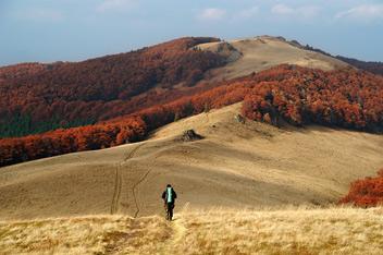 Гора Дрогобицький Камінь