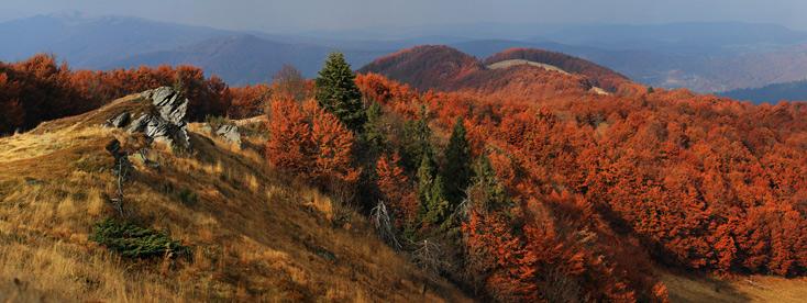 Осінь на Вододільному хребті. Вид з гори Дрогобицький Камінь