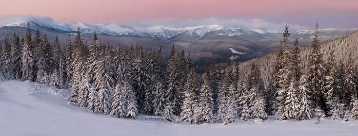 Зимовий ранок в Карпатах