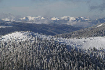 Вид на Полонину Красна з вершини гори Чорна Клива (1719 м над р.м.)