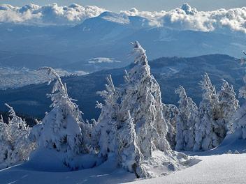 Зима в Карпатах (Фото: Сергій Вовнюк)