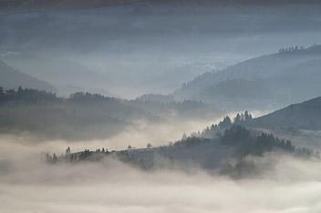 © Igor Melika
