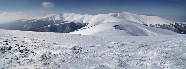 Полонина Боржава на початку березня (вид з гори Гемба)