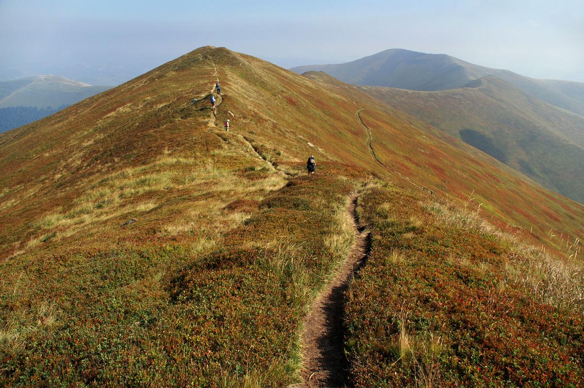 Гірська стежка (плай) на Полонині Боржава