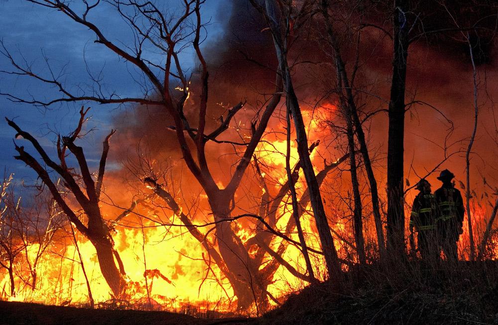 22 млн.грн. збитків, опіки та пожежа будівель. До чого призвело паління сухої трави на Прикарпатті